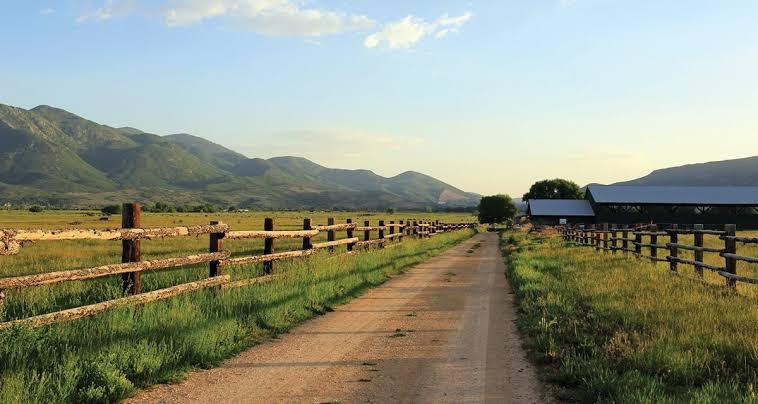 Ley federal de desarrollo rural sustentable
